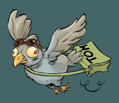 http://g.rudowski.free.fr/pigeon.jpg